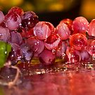 Cluster of Grapes by Trudy Wilkerson