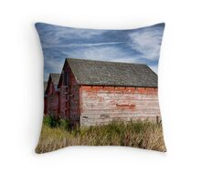 Red Barns Series 4 Throw Pillow