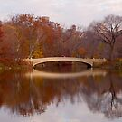 Bow Bridge - Central Park by Steven  Lippis