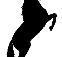 Andalusian Stallion Silhouette by missmoneypenny