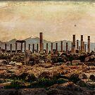 Roman Ruins in Turkey by Lynn Bolt