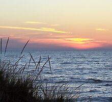 Lake Michigan Sunset by revdrrenee