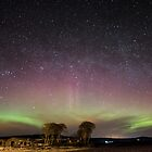 Northern Lights by Andy McDonald