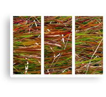 Wild Grass Triptych Canvas Print