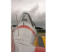 WWII Fighter Photographic Print