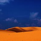 One Man And His Big Dunes by DavidCThomson