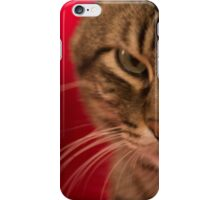 Angry cat iPhone Case/Skin