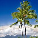 Island Paradie by Joshua Rablin