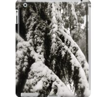Draped in Splendor iPad Case/Skin