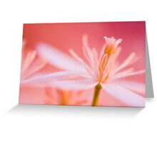 Pink Lace.  Greeting Card