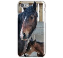 Shire Horse & New Foal iPhone Case/Skin