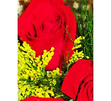 Red Rose Painting Photographic Print