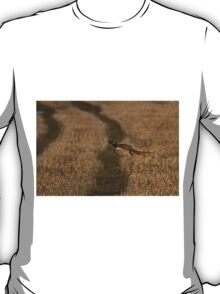 Pheasant in flight T-Shirt