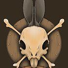 Real Rabbit Skull by crabro