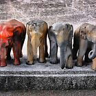 A line of elephants by Robyn Lakeman