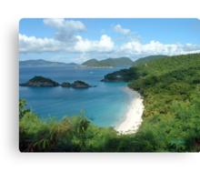 Trunk Bay, St. John USVI Canvas Print