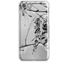 Ice Melting iPhone Case/Skin