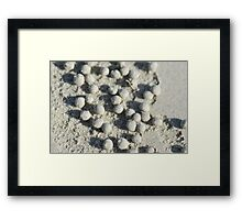 Ball Colony Framed Print