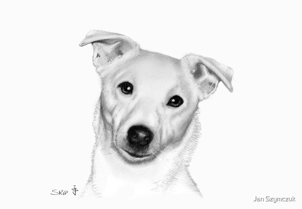 Dog Pencil Sketch - Skip by Jan Szymczuk