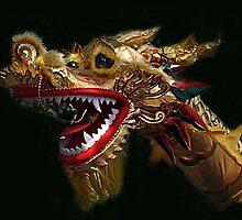 Golden Dragon - Bendigo Easter Parade by Bev Pascoe