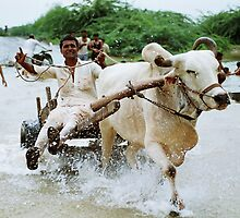 Rural Go Carting!!! by Biren Brahmbhatt