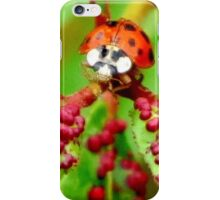 Do I Clash With These Spots? iPhone Case/Skin