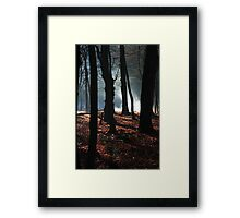 mystery in the woods Framed Print