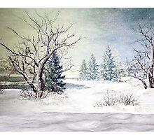 A Snow Scene Photographic Print