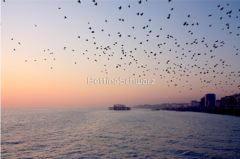 Sunset ~ Old Brighton Pier by BettinaSchwarz