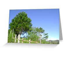 Trees and Sky 2 Greeting Card