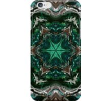 Decor 118 iPhone Case/Skin