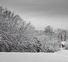 A Snowy Landscape (Revisited) by LarryB007
