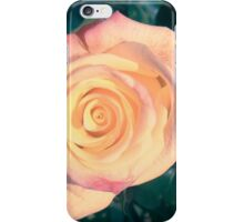 Two colored rose iPhone Case/Skin