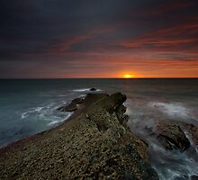 THE SCAR by STEVE  BOOTE