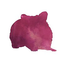 Hamster silhouette watercolor art print painting by Joanna Szmerdt