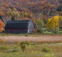 Autumn Barn by R Hawkins