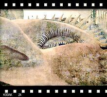 Luna Park ... retro by Rosalie Dale