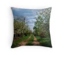 Rural road in spring Throw Pillow