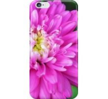 Pink Zinnia Flower iPhone Case/Skin