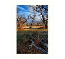 Riverside Park HDR Art Print