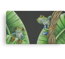 Red Eyed Frogs Canvas Print