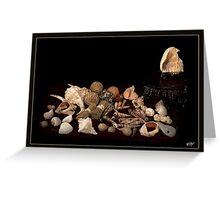 Shell Sprig Point Greeting Card
