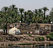 Along the Nile by R Hawkins