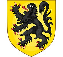 Coat of Arms of Flanders Photographic Print