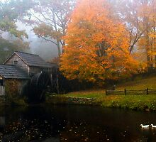 grist mill with ducks by Bob Melgar