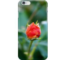 Budding iPhone Case/Skin
