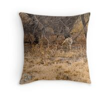 The Coyote Project Continues Throw Pillow