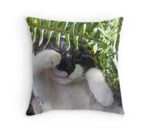 Paws Among the Ferns Throw Pillow