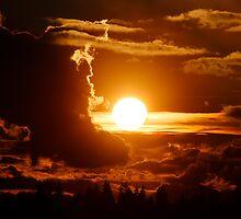 Sun by Olga Zvereva