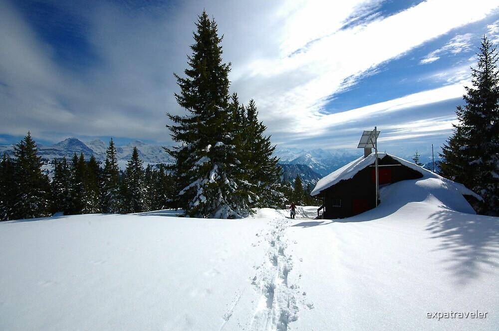 Snowshoeing  by expatraveler